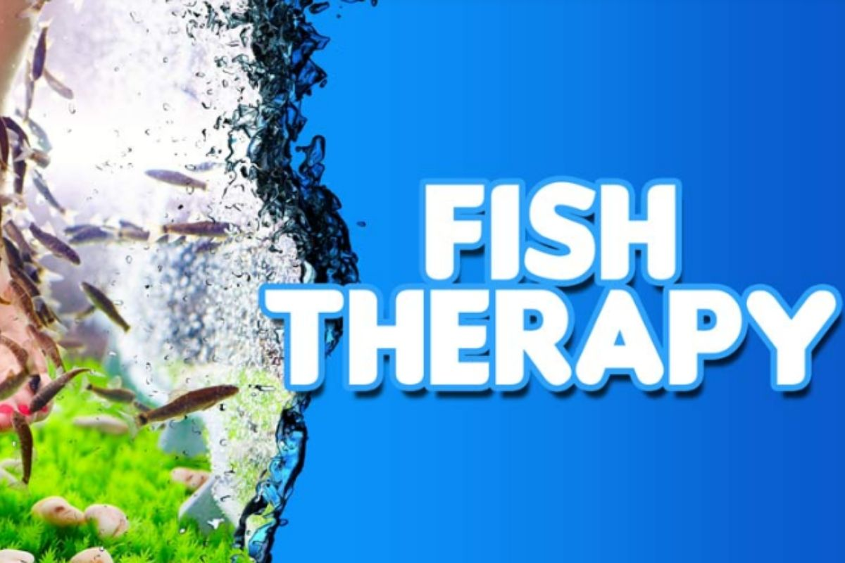 Fish therapy- Office Holi Ideas